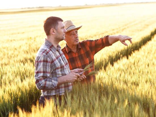 Alberta Land Titles 1